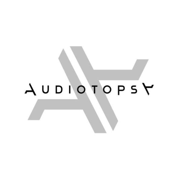 wpid-audiotopsylogo.jpg